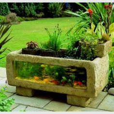1000 images about fancy fish tank ideas on pinterest for Outdoor fish tank uk