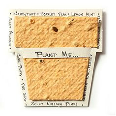 Bloomin Mini Desert Orange Pot-Shaped Seed Paper Enclosure Cards 9 Card Set - Perfect for Valentine's Day, Mother's Day and Wedding Anniversaries! Size: x Paper Cards, Paper Gifts, Diy Paper, Seed Paper, Wildflower Seeds, Artisanal, Flower Pots, Gift Tags, Size 2