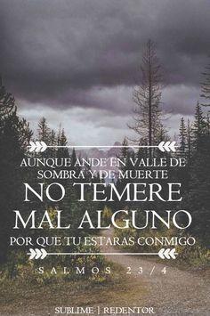 Salmos 23:4 Aunque ande en valle de sombra de muerte, No temeré mal alguno, porque tú estarás conmigo; Tu vara y tu cayado me infundirán aliento.♔