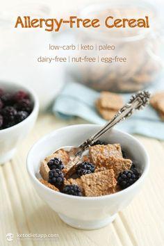 Allergy-Free Healthy Keto Cereal (low-carb, paleo, nut-free, dairy-free, egg-free, sugar-free, vegan)