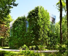 Leafy Greenwich Art Barn is Completely Wrapped With Living Plants!   Inhabitat New York City