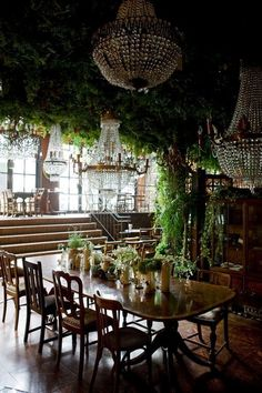 Amazing indoor plant canopy with chandeliers poking through at The Mansion on the Hill restaurant.