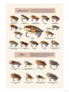 """Fly-Fishing Lures: Standard And Hair"" Print (Unstretched Canvas Giclee Fly Fishing Lures, Trout Fishing Tips, Gone Fishing, Best Fishing, Fishing Tricks, Fishing Stuff, Salmon Fishing, Fishing Reels, Fishing 101"