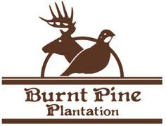Getaway at The Burnt Pine Plantation in Covington Georgia!