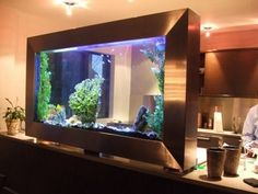 Dekoracyjne akwarium w domu / Aquarium for home decoration