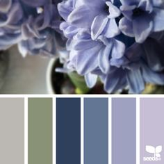 a huge <sigh> when i saw this photo @judithswinkels shared in #SeedsColor ... i find when working with hyacinths as inspiration, they pose the same challenges succulents do ... there is a unique subtlety to their color that is critical ... a little bit of chroma goes a *long* way when it comes to these hues ... there is also the subtle range of warm to cool tones which harmonize in a powerful way ... such a wonderful depth in a single bloom ... thank you Judith for another beautiful…