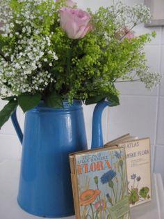 Books botanique