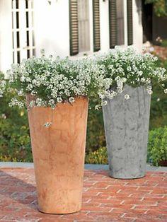 62 best planters tall images potted plants pot plants rh pinterest com