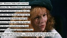 "Molly Weasley from HP feeding up Teddy Tonks because of what Remus said about her kids. ""What do you think we'd do, let them starve? Headcanon Harry Potter, Harry Potter Fandom, Harry Potter Memes, Potter Facts, Harry Potter Head Canon, Harry Potter Interviews, Draco Malfoy, Hermione Granger, Severus Snape"