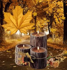 The perfect Autumn MidAutumn HappyFall Animated GIF for your conversation. Discover and Share the best GIFs on Tenor.