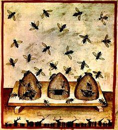 Tacuinum Sanitatis, ca. 1400 Beehives