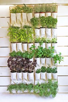 16 DIY Herb Garden Ideas You'll Obsess Over - Craftsonfire