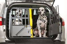 Keeping your dog safe is top of the list for all dog handlers and owners, the MIM Safe Variocage Double is the best choice for safely transporting your dogs. The MIM Safe Variocage Double is features a movable center divider that is easily adjustable if Dog Travel Cage, Dog Transport, Airline Pet Carrier, Diy Dog Crate, Puppy Supplies, Dog Cages, Dog Safety, Pet Carriers, Dogs