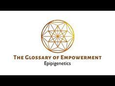 Epigenetics - YouTube