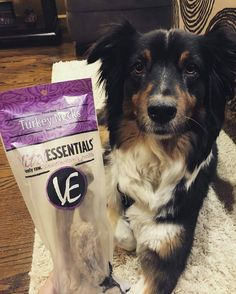 @Regrann from @sassyandsila -  We can't get enough of our @vitalessentialsraw Turkey Necks! 😛💦 *drool* 💯 They are a long lasting, delicious freeze dried raw treat! 👍👍 Mom loves to give them to us when she leaves for work or has cleaning to do and needs us occupied. 🙄 But we won't complain though, THEY'RE SO GOOD!! ❤️ they are absolutely one of our favorite vital treats! 👍  Visit @vitalessentialsraw ,  vitalessentialsraw.com , or @chewy to pick up your own Turkey Necks, and also check…
