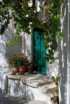 Colourful entrance, Naxos island - Greek style by Chris Gregory on Old Doors, Windows And Doors, Porches, Entrance, Beautiful Places, Landscape, World, Flowers, Flower Pots