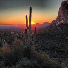Arizona! Home Sweet Home!