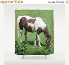 ON SALE Horse in Spring Field Shower by B2Bdesigns on Etsy
