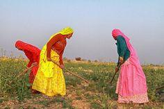 india   Flickr - Photo Sharing!