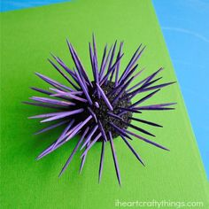 I HEART CRAFTY THINGS: Sea Urchin Kids Craft, also ideas for anemone and starfish
