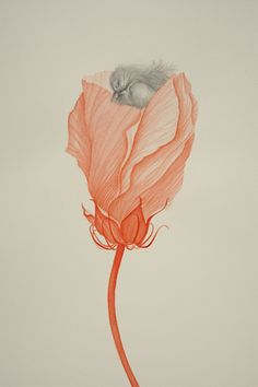 Valerie Hammond, DCR 4 Detail, 2011, water color and graphite on paper, 22 x 30 inches
