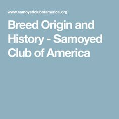 Breed Origin and History - Samoyed Club of America