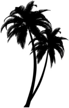 Lovin the palm tree tattoos! Future Tattoos, New Tattoos, Tatoos, Beach Tattoos, Piercing Tattoo, I Tattoo, Piercings, Palm Tree Silhouette, Silhouette Cameo
