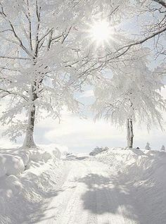 Sunshine glistening over the snow