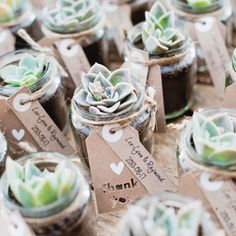 We love these DIY succulent favors & so much more in this gorgeous rustic wedding: