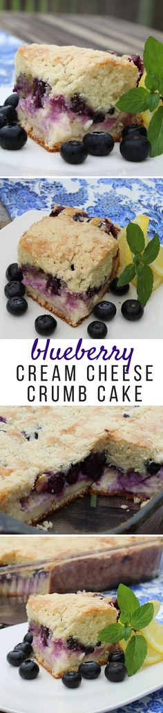 The perfect summer treat that any blueberry lover is going to adore! This cake is definitely family tested and approved!