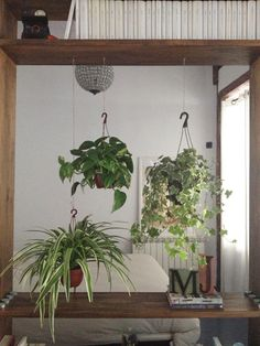@Emily Gardner  look at this cute bookshelf idea with plants hanging under :)