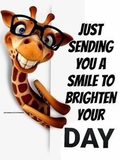 Monday Morning Quotes, Cute Good Morning Quotes, Funny Good Morning Quotes, Good Day Quotes, Good Morning Sunshine, Good Morning Messages, Good Morning Greetings, Morning Humor, Funny Quotes
