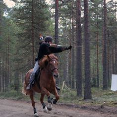 Mounted archery with a finnhorse. :) Photo by Kari Rintalahti http://finnhorseblog.com/2013/11/07/mounted-archery-with-a-finnhorse/