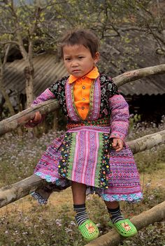 Red Hmong