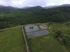 Os tanques de tilápia da Fazenda Vale do Ouro! Visto lá de cima.