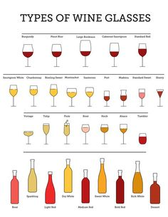 Types of Wine Glasse