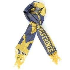 Michigan Wolverines 27'' x 78'' Scarf - Maize/Navy Blue