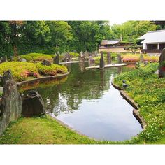 Matsuo-taisha shrine in Kyoto Japanese garden with pond by Mirei Shigemori. I have never seen the use of long strip islands with the use of tall 'peak' rocks. Interesting.