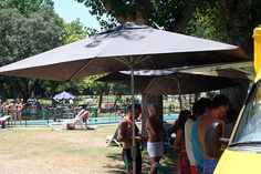Piscina del Club de Campo Villa de Madrid julio 2015