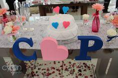 Lindo Casamento da Carol & Pedro preparado em uma semana. As bênçãos do Senhor sobre o casal <3<3