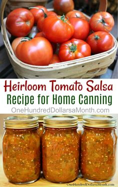 This afternoon I made our first batch of homemade salsa using a rather large variety of our heirloom tomatoes.  The house smells like a  Mexican restaurant right now, and tonight I will be serving homemade refried beans, homemade tortillas, rice and lots and lots of yummy homemade salsa.  I found this recipe for salsa over at CDKitchen …