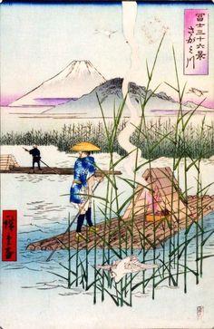 『冨士三十六景』「さがみ川」(歌川広重 画)の拡大画像