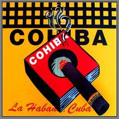 Cohiba Cigar by Steve Kaufman