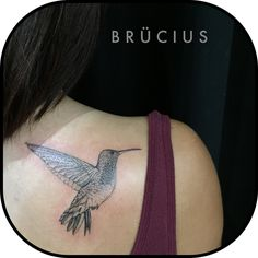 #BRÜCIUS #TATTOO #EUROPE #tour #SanFrancisco #brucius #natural #science #engraving #etching #sculptoroflines #dotwork #blackwork #penandink #lines #nature #hummingbird
