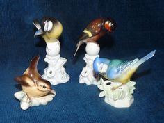 Jolie ensemble de 4 oiseaux anciens en Porcelaine de saxe Unter Weiss Bach