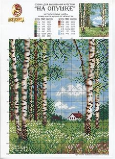 white birch or aspen trees in spring or summer meadow cross stitch