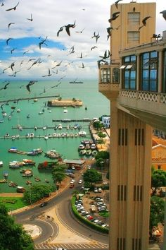 #Salvador - Bahia  Destination: the World