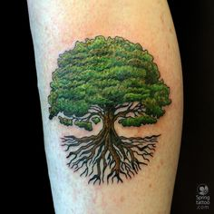 Today's tree #tattoo Posted at http://springtattoo.com/eng/daily-tattoos-and-news/
