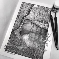 """""""Some Sunday pen and ink drawing in the sketchbook 🖊"""" Ant Drawing, Black Pen Drawing, Ink Pen Art, Ink Pen Drawings, Ink Illustrations, Illustration Art, Pen And Watercolor, Watercolor Trees, Watercolor Portraits"""