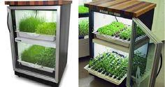 Urban Cultivator: Cultiva en tu propia cocina - VeoVerde